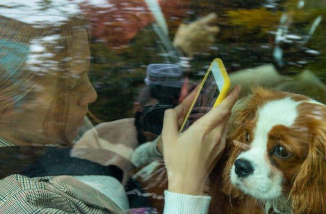 Nemecký pár zatkla v Chorvátsku polícia, deti a psa nechali počas horúčav v uzamknutom aute