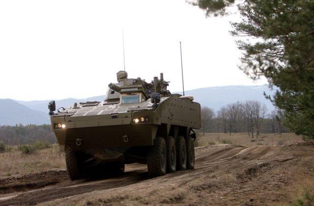 Česi sa rozdelili kvôli stiahnutiu vojsk z Afganistanu