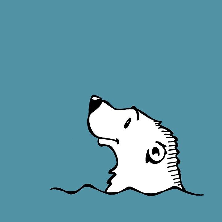 Estráda pre ľadové medvede